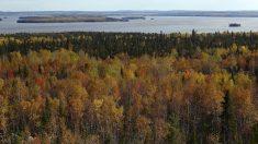 L'Abitibi-Témiscamingue, le Far West du Québec
