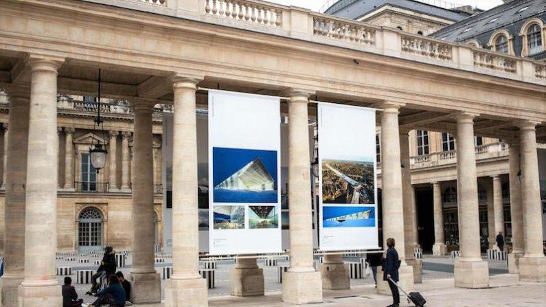 L'AFEX célèbre ses 20 ans d'existence et présente son exposition au Palais Royal à Paris