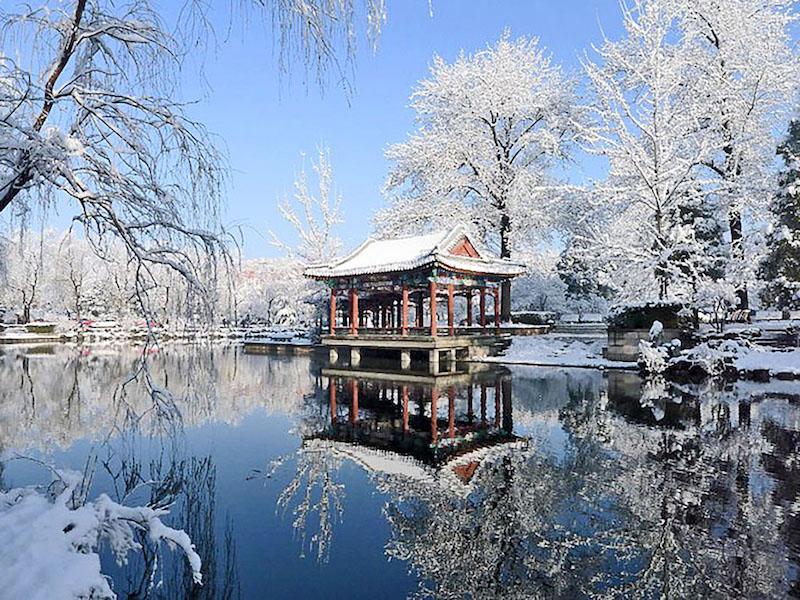 Dongzhi: les traditions chinoises du solstice d'hiver
