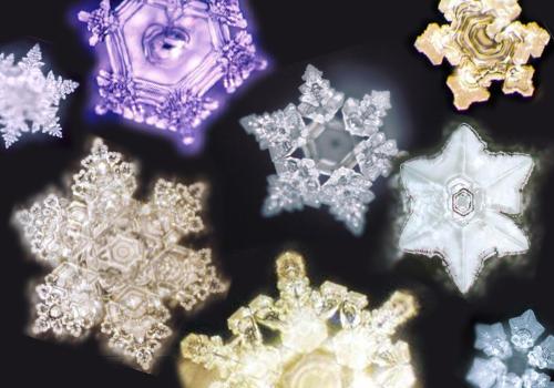 Les mystères de l'eau, ses cristaux et son intelligence