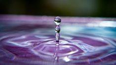 L'existence bien réelle d'un quatrième état physique de l'eau