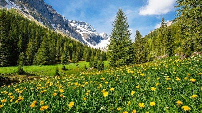 Plus de 7000 ans d'agriculture et de pâturage révélés par la fonte des glaces dans les Alpes suisses