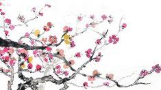 Dong Feng et la forêt d'abricotiers