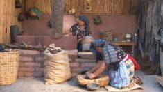 Oaxaca: la route mexicaine du chocolat