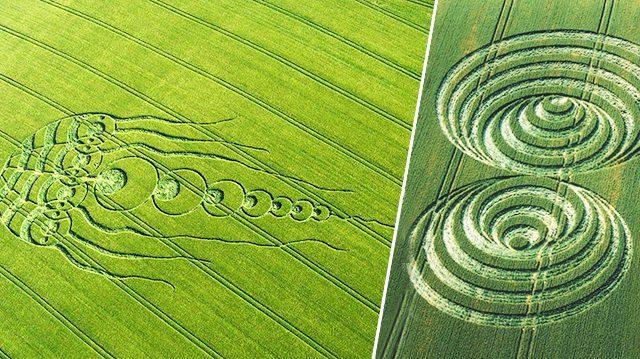 Les cercles de culture où «crop circles» proviennent-ils des extraterrestres?