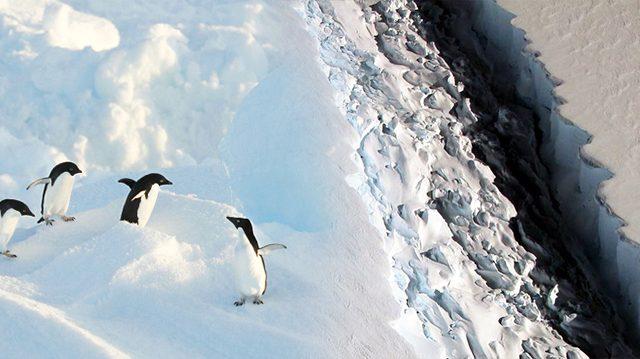 Un iceberg de mille milliards de tonnes s'est détaché de l'Antarctique