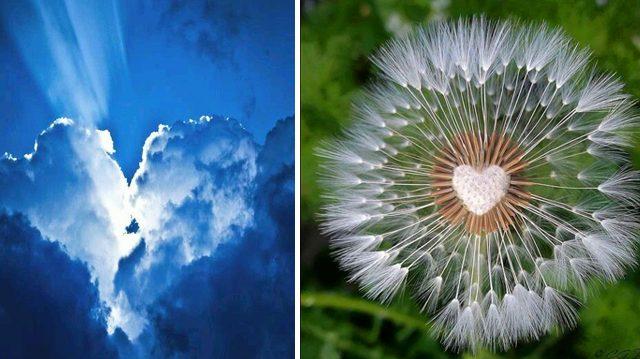 Les humains ne sont pas les seuls à avoir un cœur, la nature en a un grand aussi !