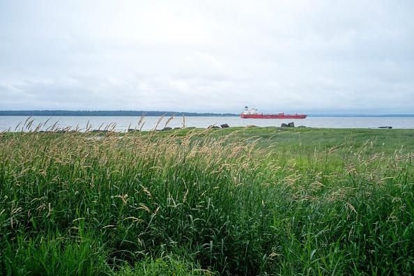 Canada: vitesse réduite dans le Saint-Laurent pour sauver les baleines