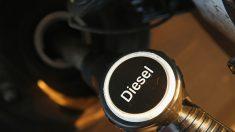 Automobiles diesels allemands: des logiciels sous surveillance de l'UE