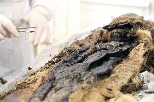 Des momies d'une mystérieuse civilisation arctique découvertes en Sibérie