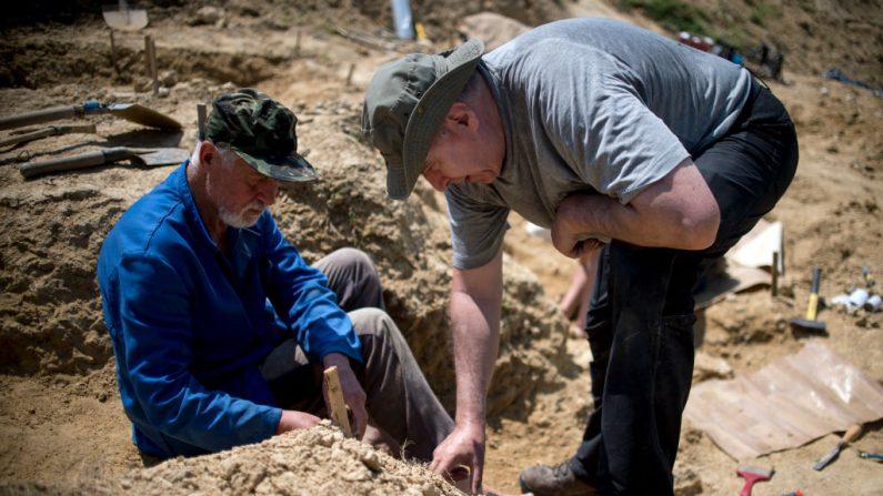 Des empreintes humaines vieilles de 5,7 millions d'années découvertes en Crète font repenser les origines de l'homme