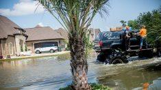 Au Texas, les «mega trucks» viennent au secours des sinistrés