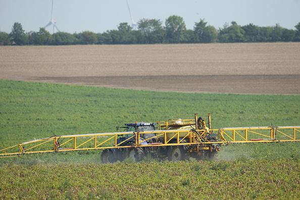 Glyphosate: le rapport de l'Efsa copie de celui de Monsanto