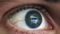 Une commissaire européenne ferme son compte Facebook,
