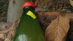 Les mille et une vertus du vinaigre de cidre