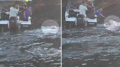 Une créature immense sous l'eau se dirige droit sur leur bateau