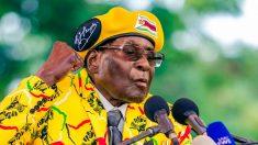 Zimbabwe : explosion de joie pour saluer la démission de Mugabe