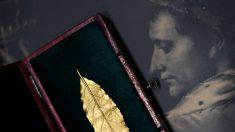 625.000 euros pour une feuille de laurier en or de la couronne de Napoléon