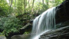 La COP 23, l'eau une préoccupation majeure, encourager les systèmes naturels