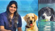 Elle a quitté son poste de manager pour devenir la première femme dresseuse de chiens de Chennai ! Véritable amoureuse des chiens