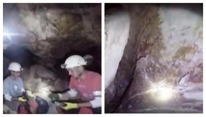Des scientifiques ont découvert une forme de vie inconnue dans les grottes profondes du Grand Canyon