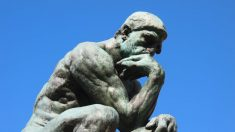 Les perturbateurs endocriniens, une menace pour notre intelligence