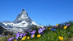 Vidéo : Le pan d'une montagne s'effondre en Suisse