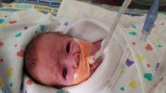 Un nouveau-né se bat pour sa vie à l'hôpital, ses parents sont forcés de retourner travailler - regardez qui se propose pour tenir compagnie au bébé