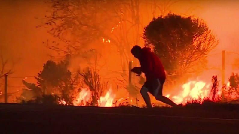 CALIFORNIE – Il se gare pour sauver un lapin sauvage d'un incendie et devient un héros sur internet