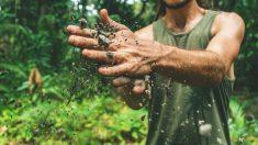 La biodiversité des sols nous protège, protégeons-la aussi !