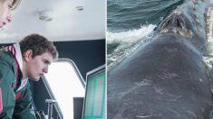 Les experts détectent de faibles appels en mer - ce qu'ils ont tracé n'avait pas été vu depuis 10 ans