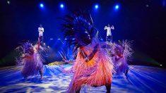 Le cirque Phénix renonce aux animaux sauvages et propose des shows spectaculaires à la place