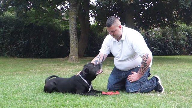 Un homme déprimé prépare un nœud coulant pour se pendre – mais ce que son chien fait ensuite lui sauve la vie