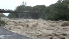 [VIDÉO] La Réunion : les images impressionnantes de la tempête tropicale Berguitta qui frappe l'Île