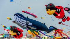 Berck-sur-Mer : un festival de cerfs-volants pour ensoleiller la plage