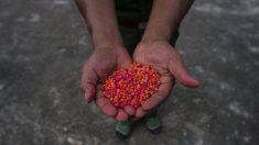 L'usage de drogues par des fonctionnaires chinois, un problème grandissant lié à la corruption