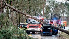 Europe du Nord: quand les tempêtes soulèvent les camions, abattent les arbres et font voler les gens