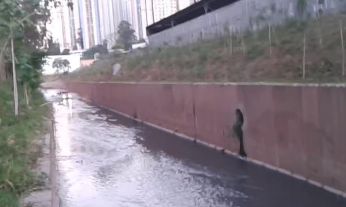 Un chien était piégé dans un canal escarpé, l'action d'un homme d'affaires local gagne l'admiration de tous