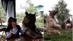 Ce couple russe a un membre de la famille inhabituel – quand vous voyez ce qu'ils font pour le plaisir, je ne peux pas regarder!