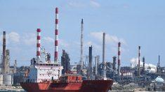 Fos-sur-Mer : une association dénonce la présence de produits toxiques dans le poisson et la viande