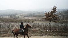 ITALIE - Un médecin se déplace à cheval pour rendre visite à ses patients vieillissants