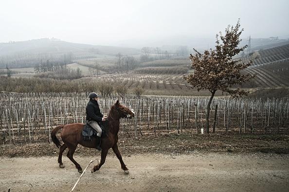Italie un m decin se d place cheval pour rendre visite for Multiplication cheval