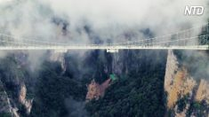 C'est le pont à fond de verre le plus haut et le plus long au monde. Oseriez-vous le traverser ?