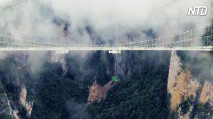 C'est le pont à fond de verre le plus haut et le plus long au monde. Oseriez-vous le traverser?