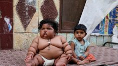 Un bébé de 8 mois pèse autant qu'une enfant de 4 ans – les médecins sont incapables de déterminer pourquoi elle a toujours faim
