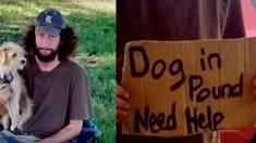 ÉTATS-UNIS - Une femme aide un sans-abri à retrouver son chien - ce qui se passe ensuite est magnifique