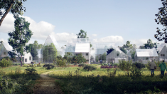 Des villes et des jardins