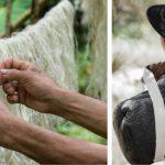 Elle invente un cuir végétal aussi souple et résistant que le cuir traditionnel – vous ne devinerez jamais quelle plante elle a utilisé!