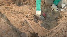 Des squelettes humains de 1 300 ans venant d'un peuple indigène ont été découverts au Pérou