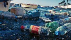 Inde : Bombay et sa région interdisent le plastique non réutilisable